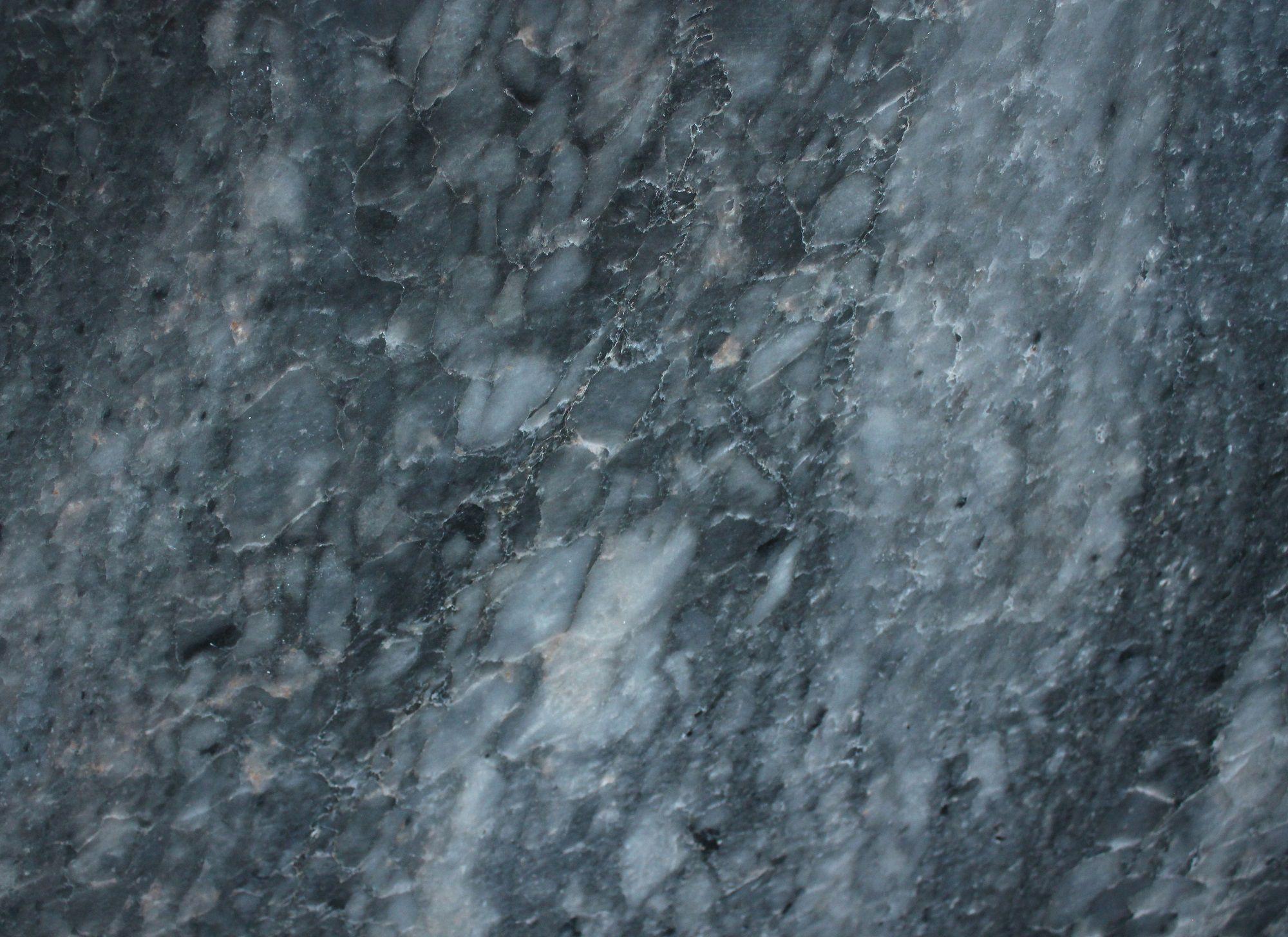 Аntilopa gray