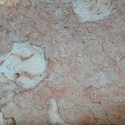 Orient Fossil (Ориент Фосил)